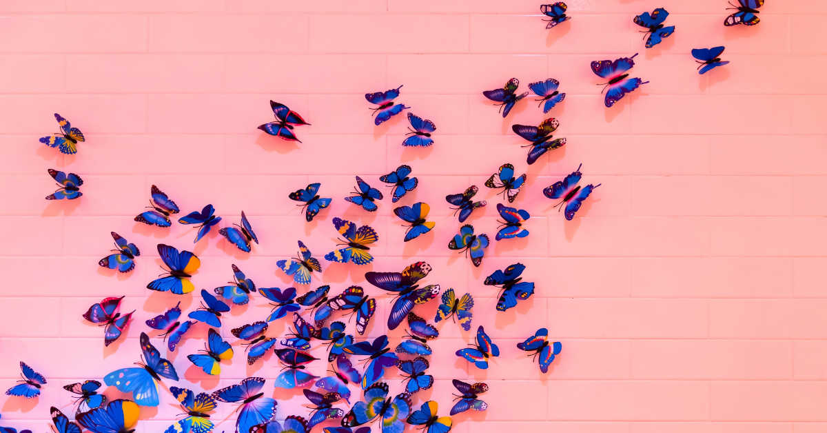 Jack's Butterflies. Freeing Families From The Cocoon Of Disease
