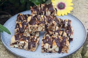 nut-and-cranberry-bars-susan-joy.jpg