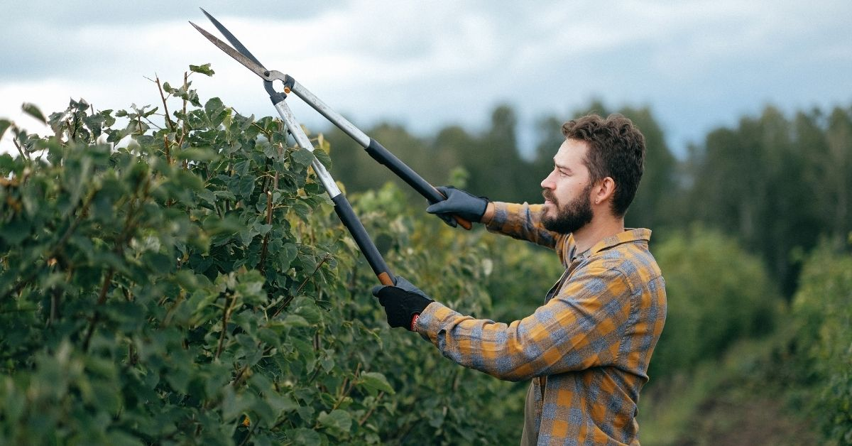 How to Maintain Momentum by Pruning Your Practices
